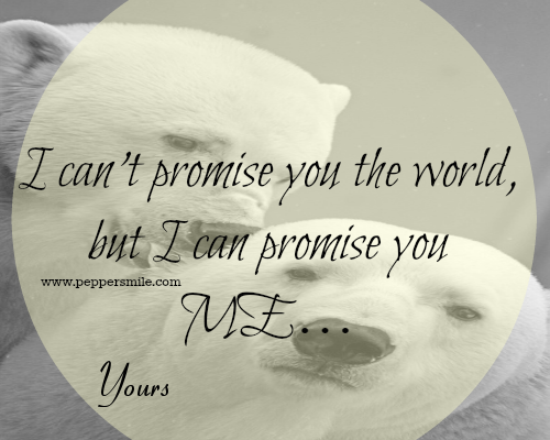 i can promise you